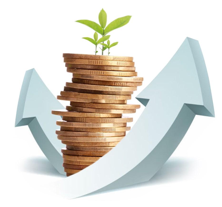 Оплата аренды земельного участка физических лиц: как узнать задолженность
