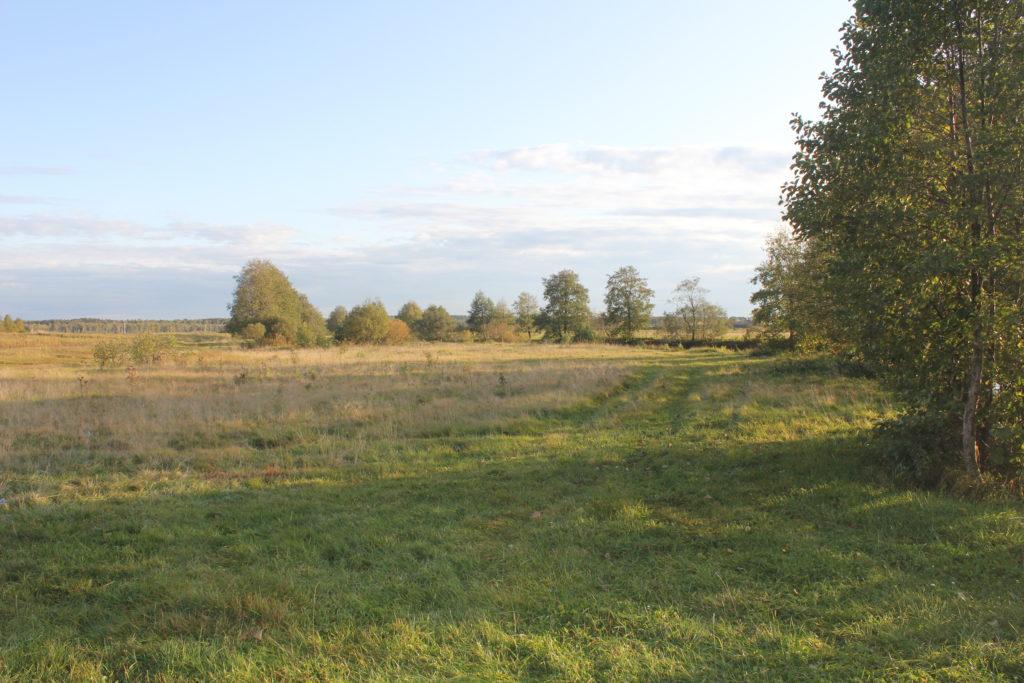 Установление права собственности на земельный участок