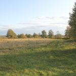 Содержание права собственности на землю